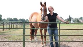 paardenosteopaat marlies van dijk